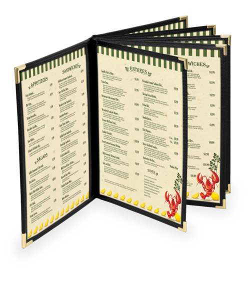 Ten View Dynasty Menu Covers